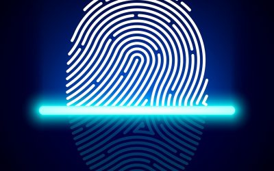 The Role Of Finger Print Analysis In A Criminal Case